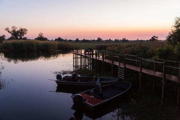 Safari en lodge au Botswana