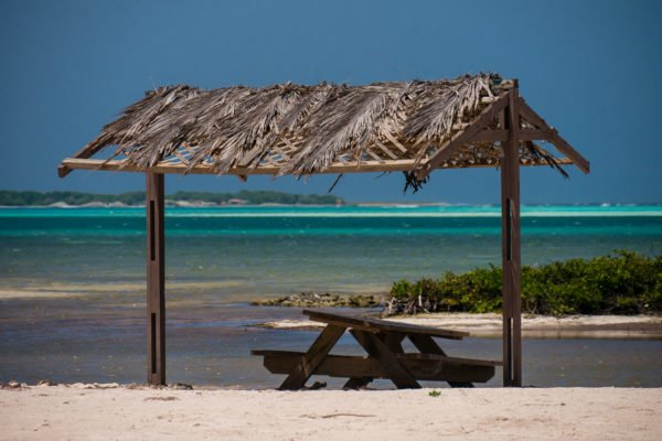 Voyage apnée à Bonaire