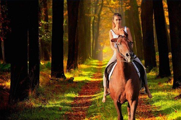 à cheval en France