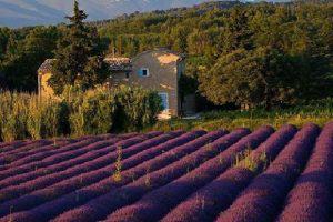 Voyage à moto en Provence
