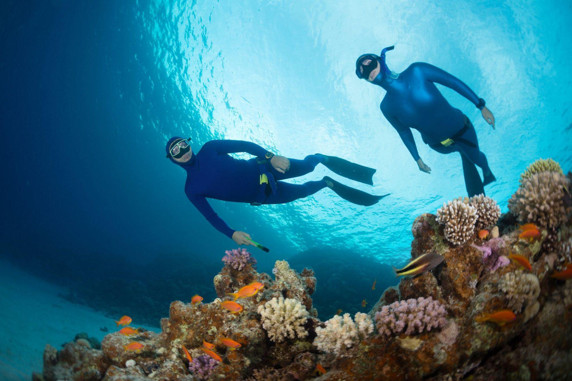 PHILIPPINES   Croisière plongée dans les Visayas