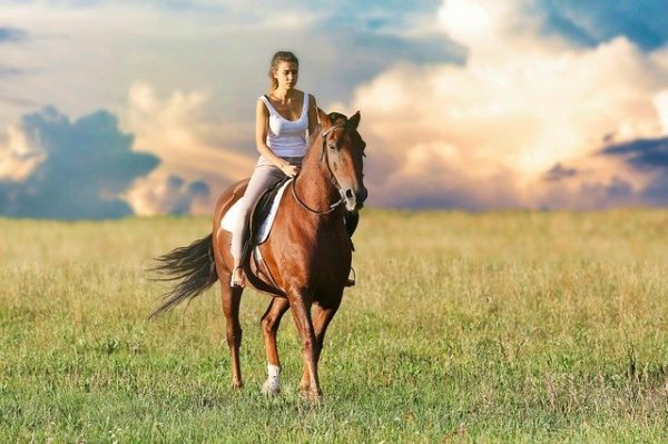 Horseback riding in France